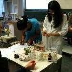 Schüler im Chemiepraktikum